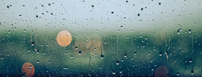 What to do on a rainy day if you have allergies